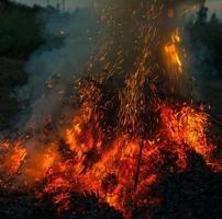 chamas de fogo laranja
