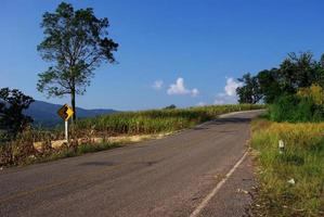 sinais de trânsito e estrada vazios foto