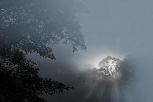poluição neblina na Indonésia. foto