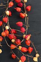 decoração de outono com fundo escuro de madeira foto