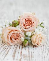 rosas cor de rosa claro foto