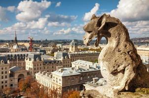 vista aérea de paris com quimera
