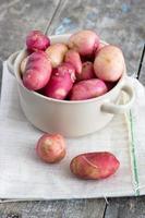 batatas orgânicas foto
