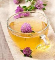 trevo de folhas de chá de ervas foto