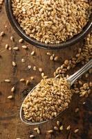 sementes de linho cruas orgânicas foto