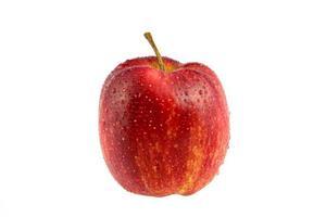 maçã vermelha molhada isolada no branco (caminho de recorte) foto