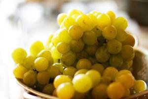 as uvas maduras iluminadas pelo sol foto