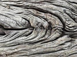 textura de madeira, fundo de madeira foto
