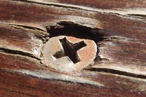 parafuso de madeira em madeira. foto