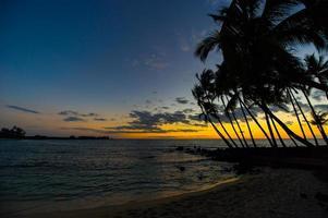 pôr do sol havaiano com silhuetas de palmeira tropical foto