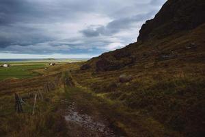 caminho de caminhada com fazendas locais - ilhas lofoten, noruega