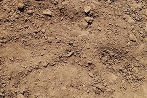 terra texturizada foto