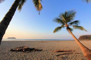 belo pôr do sol com árvores de plam na praia de samara, costa rica foto