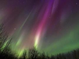 aurora boreal (luzes do norte) em alberta, canadá foto