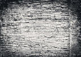 textura. madeira foto