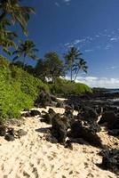 praia tropical com palmeiras, areia dourada e rochas vulcânicas