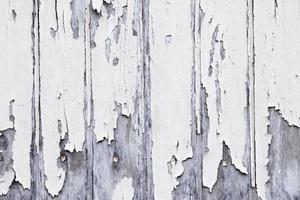 painel de madeira do grunge
