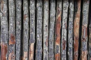 fundo da parede de textura de log foto