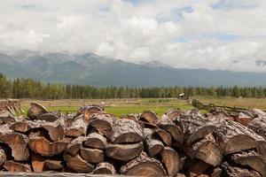lenha combinada por uma pilha contra montanhas. foto