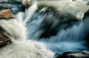 rio largo que flui através da floresta arborizada foto