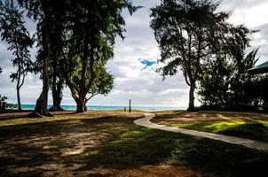 a praia de waimanalo foto