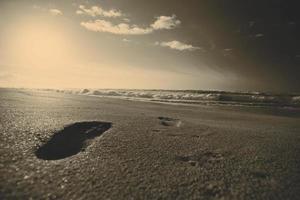 linda praia foto