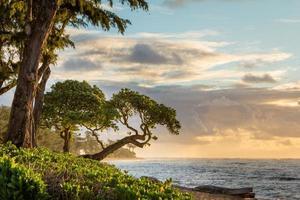 nascer do sol kauai foto