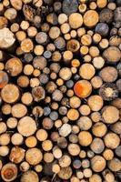 pilha de madeira