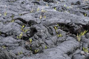 parque nacional dos vulcões de havaí, eua