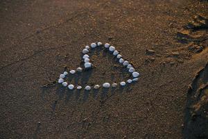 corações de concha foto