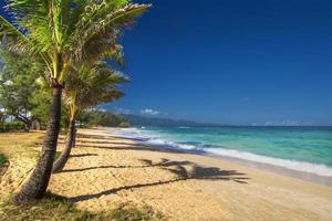 praia de paia, costa norte, maui, havaí foto