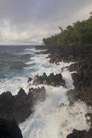 hilo coast foto