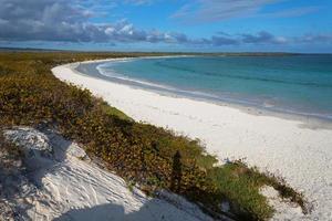 baía tortuga, ilha santa cruz, galápagos, equador