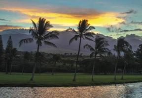 Havaí. foto