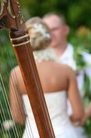 casal de noivos através das cordas de uma harpa