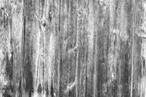 textura. madeira
