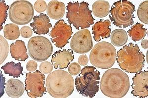 textura de madeira toco foto