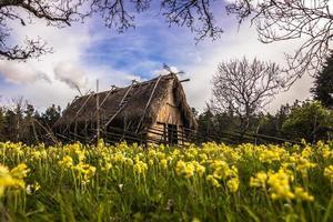 casa viking em gotland, suécia foto