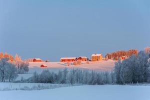 paisagem de inverno com casas de fazenda vermelhas, norte da Suécia. foto