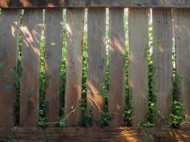 projeto de cerca de madeira. foto