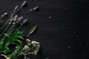 ervas francesas na vista superior de mesa preta foto