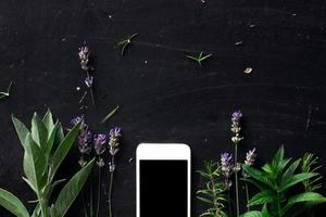 ervas francesas e telefone na vista superior da mesa preta foto