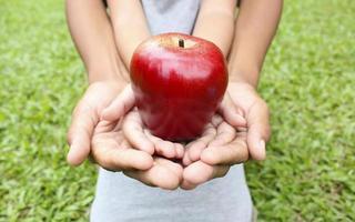 mãos adultas, segurando as mãos de criança com maçã vermelha