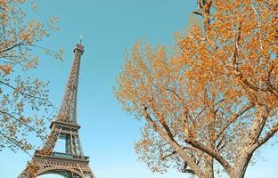 torre eiffel e árvores outonais douradas foto