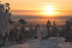 nascer do sol dourado sobre uma colina frígida da Lapônia