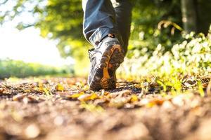 caminhando na natureza foto