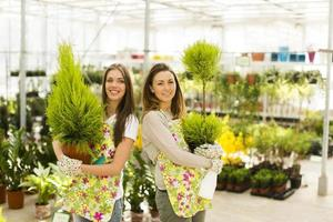 mulheres jovens no jardim de flores foto