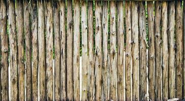textura de cerca de madeira foto