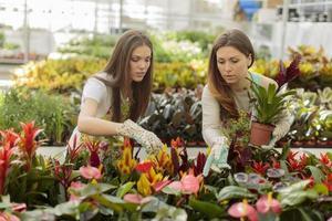 jovens mulheres no jardim foto