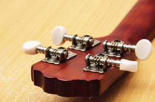 ukulele close-up